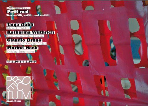 Titelseite Flyer Projectum